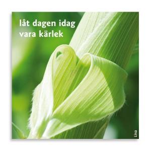 Magneter-Idag-ar-en-bra-dag-7_2534 (1)