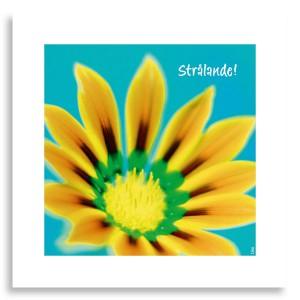 Kort-Energi-Stralande_1304