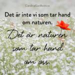 Det är inte vi som tar hand om naturen. Det är naturen som tar hand om oss.