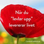 """När du """"levlar upp"""" levererar livet"""
