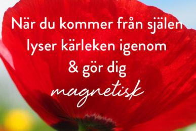 När du kommer från själen lyser kärleken igenom & gör dig magnetisk